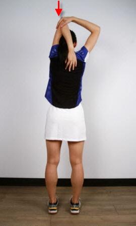 کشش عضلات بازو یا ترایسپ